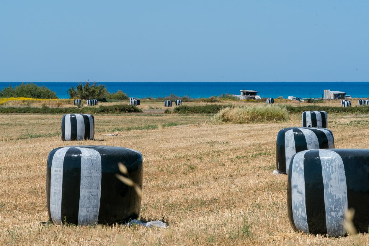 Cyprus-1