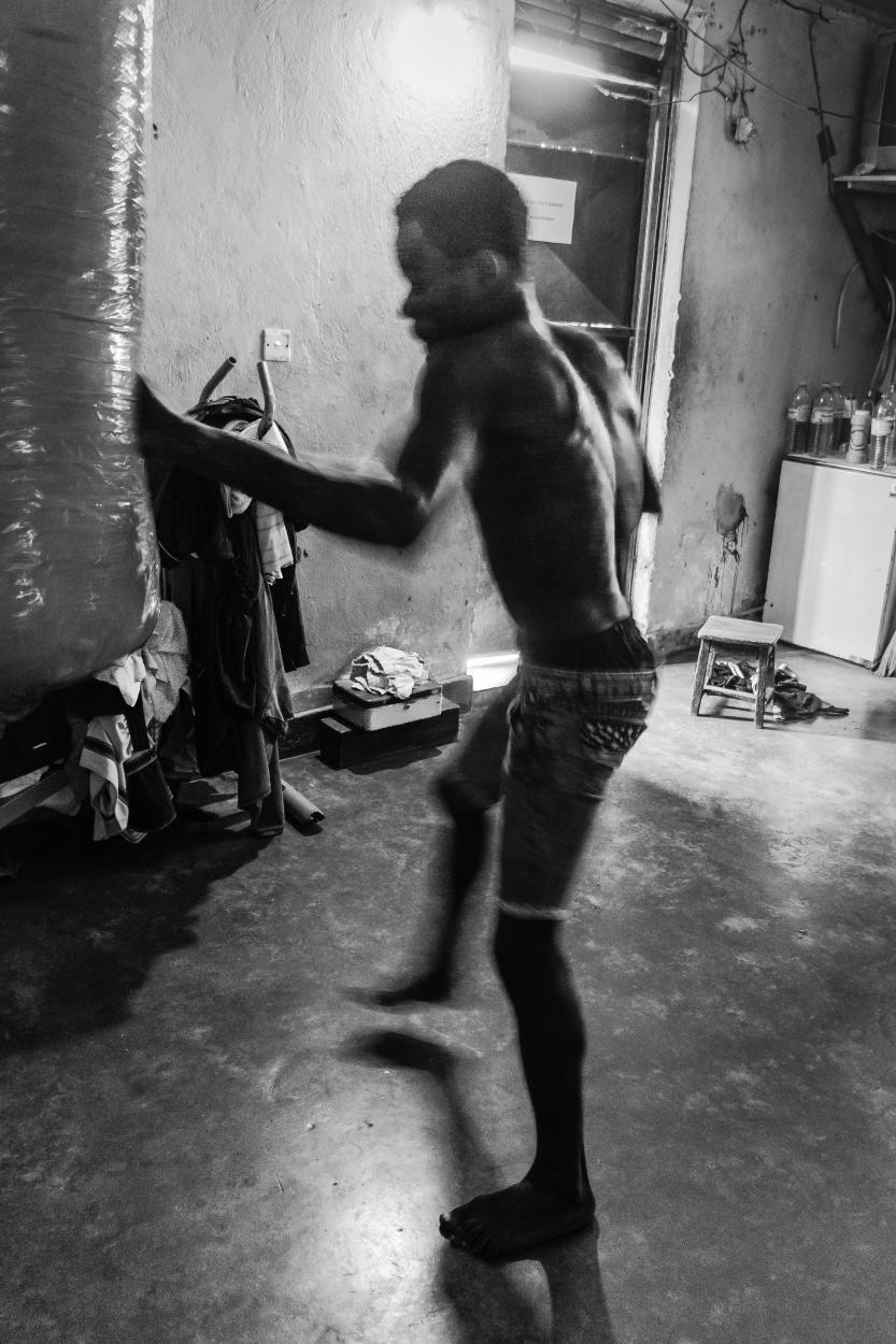Boxer Ron (7 van 15)